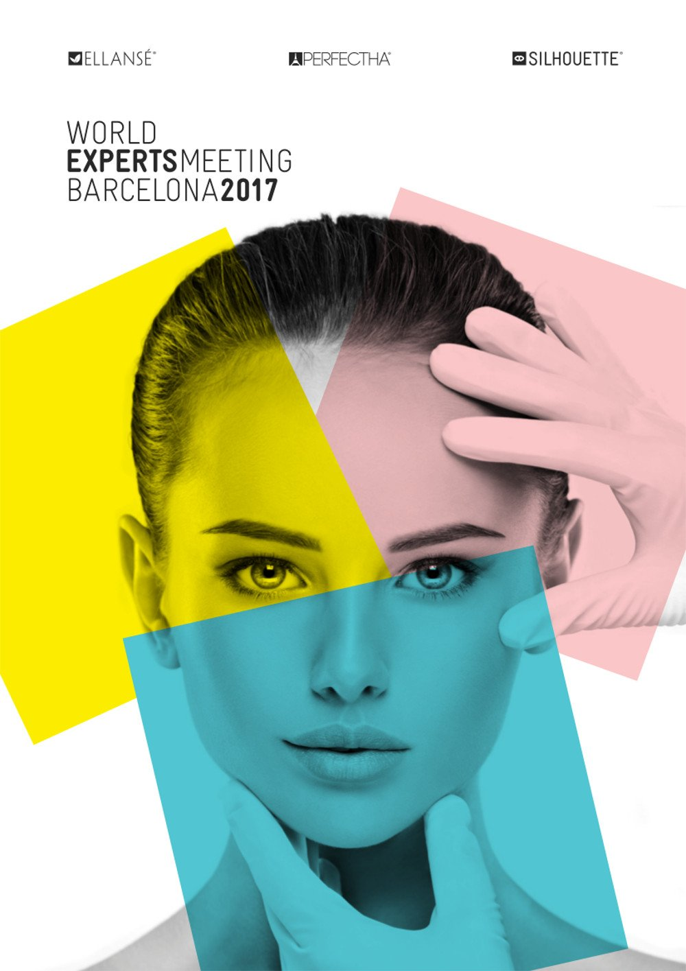 World Experts Meeting 2017 1